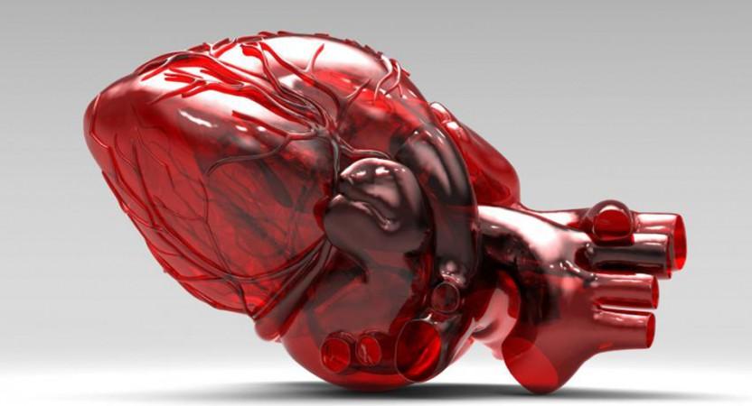 Costruire Organi Umani Con Stampanti In 3D